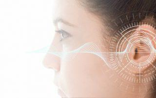 Psychoakustik: Gehirnreaktion auf Preise, Gemeinsamkeiten zwischen Lautsprechern und Wein